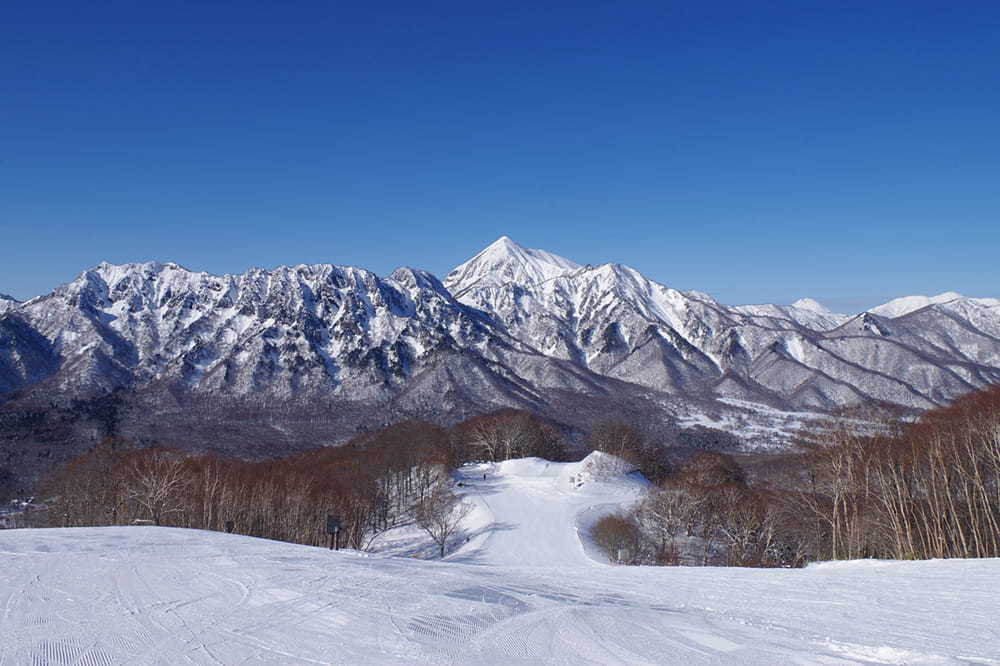 Nagano S Winter Activities And Events Special Go Nagano